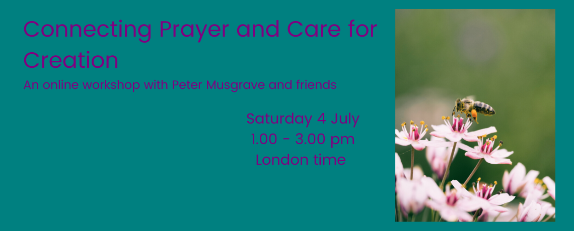 Connecting Prayer and Care for Creation